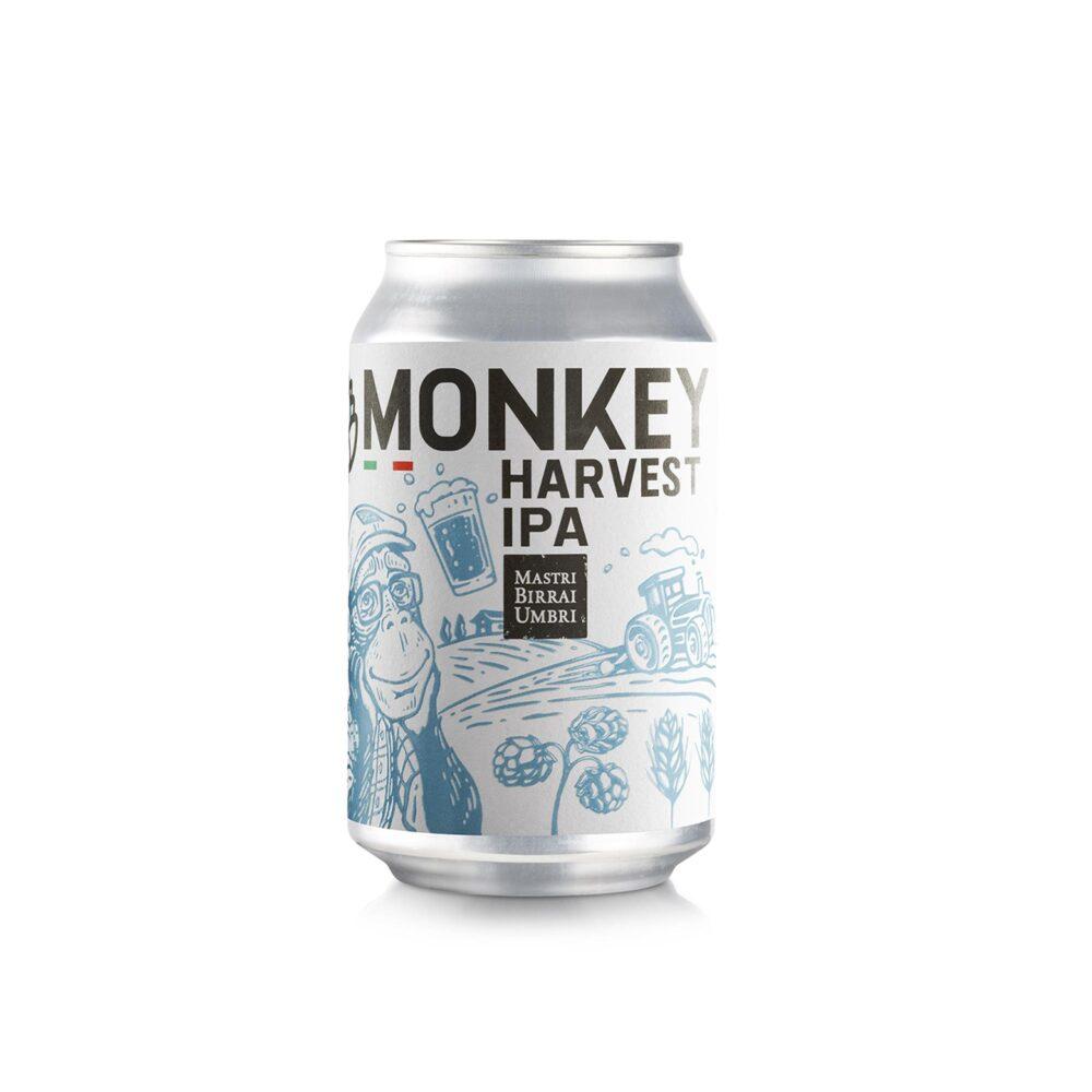 Birra in lattina monkey IPA