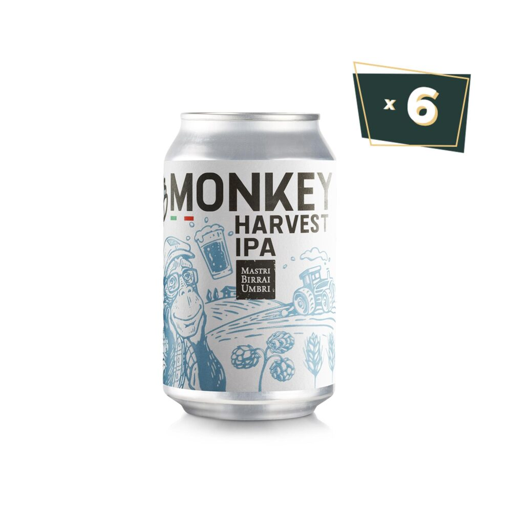 Birra in lattina monkey IPA